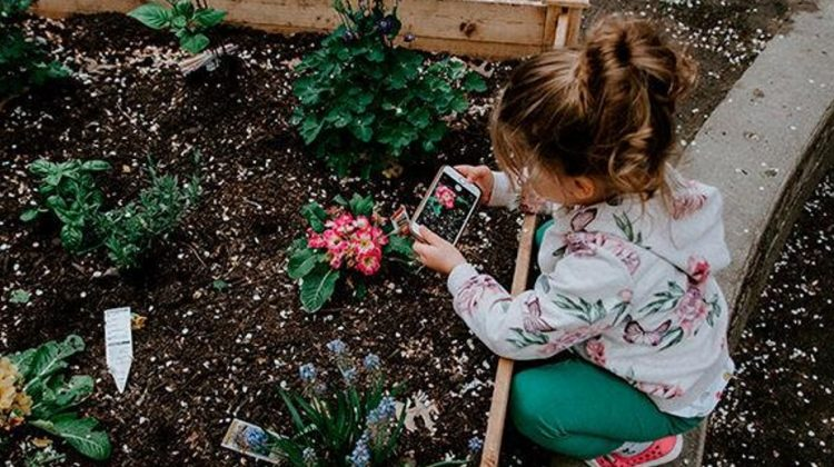 These 7 Frugal Gardening Tips Will Help You Get Good Results For Less